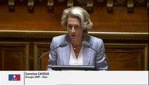 """Caroline Cayeux sur la #Réformeterritoriale : """" On substitue au 1 000 feuilles territorial, 999 feuilles ! """""""
