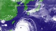 """Taifun """"Neoguri"""": 500.000 Japaner suchen Schutz - ein Toter"""