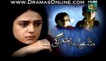 Shab-e-Zindagi Full Last Episode 24 on Hum Tv 8th July 2014