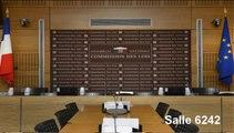 Avis de la Commission sur les propositions de nomination de Mme Adeline Hazan et de M. Jacques Toubon - Mercredi 9 Juillet 2014