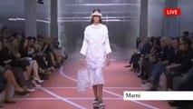 """""""MARNI"""" Fashion Show Spring Summer 2014 MIlan by Fashion Channel"""