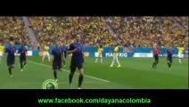 goles holanda vs brasil 3-0 goles mundial brasil 2014