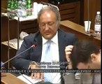 M5S - VIGILANZA RAI - Audizioni ADRAI - MoVimento 5 Stelle