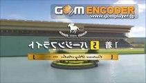 カオスな競馬ゲーム3~第2レース-2~