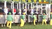 競馬 2008年 GI エリザべス女王杯 出オチ~驚愕のラスト