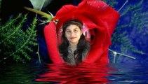 Romantic Urdu, Hindi Poetry | Vocal Asma Chaudhry