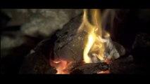 Iranian vidio music- Mohsen Yeganeh( Naro)