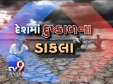 Delayed monsoon spells trouble for cotton - Tv9 Gujarati
