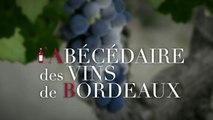 L'Ecole du vin de Bordeaux - Wine school of Bordeaux