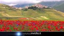 La Fioritura - IN VOLO SU CASTELUCCIO NORCIA 2014 - the flowering