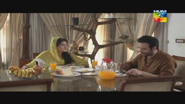 "Bhool Eipsode 46 Full Drama On Hum Tv Drama ""15 July 2014"""
