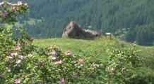 Alpes de Haute-Provence : à la découverte du sentier de mémoire Lieutenant Costa de Beauregard