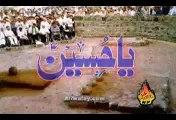 Bas Bibi s.a razi ho jaien by Shahid Baltistani