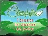 Chlorophylle épisode 94 sur Télé Doller