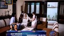 Bhabhi Episode 16 - Bhabhi Drama on ARY DIGITAL - p2
