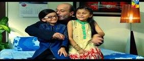 Shab  E Zindagi Teaser HUM TV Drama