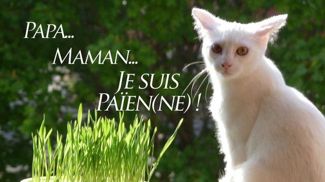 """""""J'suis Païen(ne)!"""" n°8 : Pourquoi avoir témoigné?"""