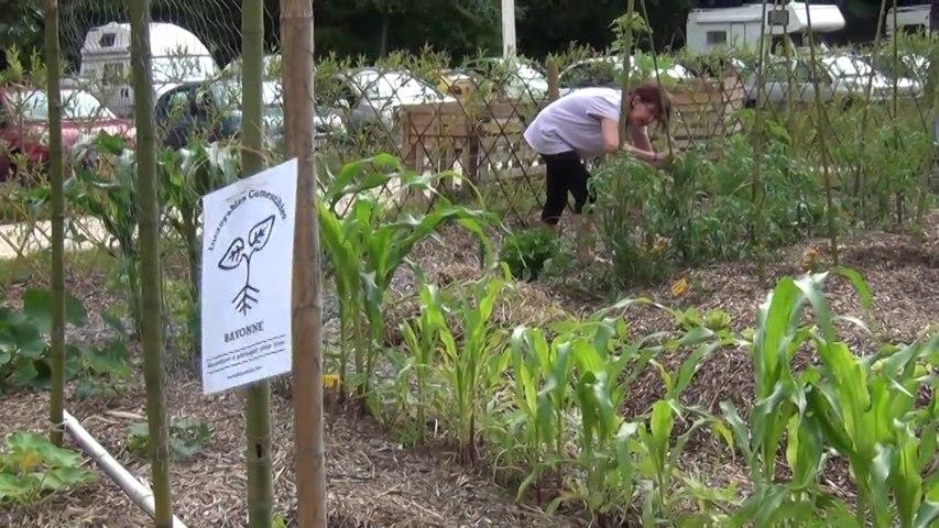 L'association Graines de Liberté crée des jardins partagés à Bayonne