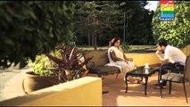 HumSafar Last Episode - video dailymotion