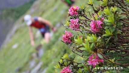 28ème Montée du Nid d'Aigle course de montagneSaint-Gervais Mont Blanc 2014