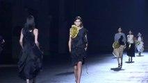 """DRIES VAN NOTEN"" Fashion Show Spring Summer 2014 Paris HD by Fashion Channel"