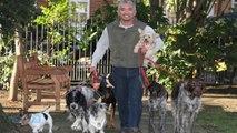 Cesar Millan -- 'Troubled' Dog Attacks During Walk With 'Dog Whisperer'