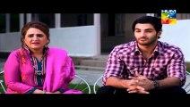 "Dhol Bajne Laga Episode 24 Full Drama On HUM TV Drama ""23 July 2014"""