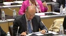 14 mai 2014- Intervention de Michel Ménard en réunion conjointe des Commissions des affaires culturelles, et du développement durable