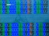 BBC - Horizon - 2001 - Killer Algae