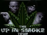 2Pac - Up In Smoke Tour 2Pac Tribute