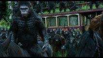 La Planète des Singes : L'Affrontement - Extrait 'Les singes ne veulent pas la guerre' [VF|HD1080p]