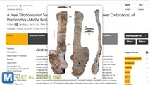 Scientists Find Fossils From a 60-Foot Sauropod