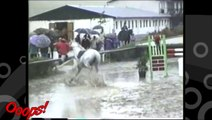 Funny Animals - Funny Home Videos - Hilarious Horse Act Ever