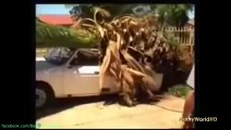 Epic Fail & Win Compilation May 2014 THE BEST FAILS & WINS COMPILATION 017
