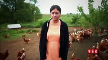 Breaking Amish Trailer ,  Breaking Amish