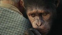 Bande-annonce : La Planète des singes : Les Origines VOST (2)