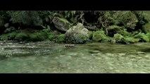Bande-annonce : Minuscule - La Vallée des Fourmis Perdues - Teaser