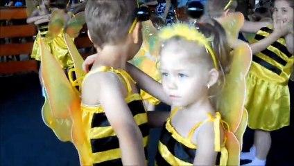 Izabela albină