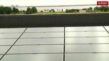 Château Montrose : les panneaux photovoltaiques