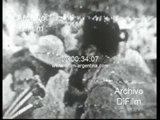 DiFilm - Fidel Castro aniversario del asalto al Cuartel Moncada 1967