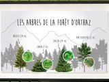 Itinério, découverte interactive de la Vallée de Chamonix-Mont-Blanc