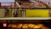 Le mauvaise qualité du blé français en 2014 fait craindre une hausse du prix de la baguette