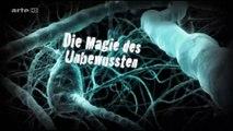 Das automatische Gehirn - 1v2 - Die Magie des Unbweussten - 2011 - by ARTBLOOD