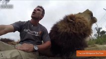 'Lion Whisperer' Tries to Talk About Lion Conservation, Is Repeatedly Interrupted By Lions
