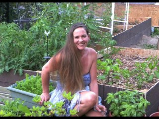 Herbs, Essential Oils and Easy Ways to Heal Yourself with Christie Aphrodite on Guerilla Radio