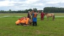 Dromadaires à La Chartre sur le Loir - spectacle cheval/dromadaire