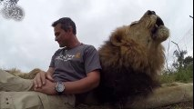 Aslanlarla arkadaş olan adam