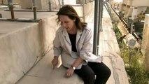 PBS - NOVA Secrets of The Parthenon (2008)