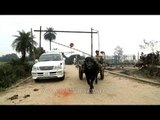 Bullock cart crosses railway level crossing in Uttar Pradesh