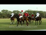 The sport of kings - Polo